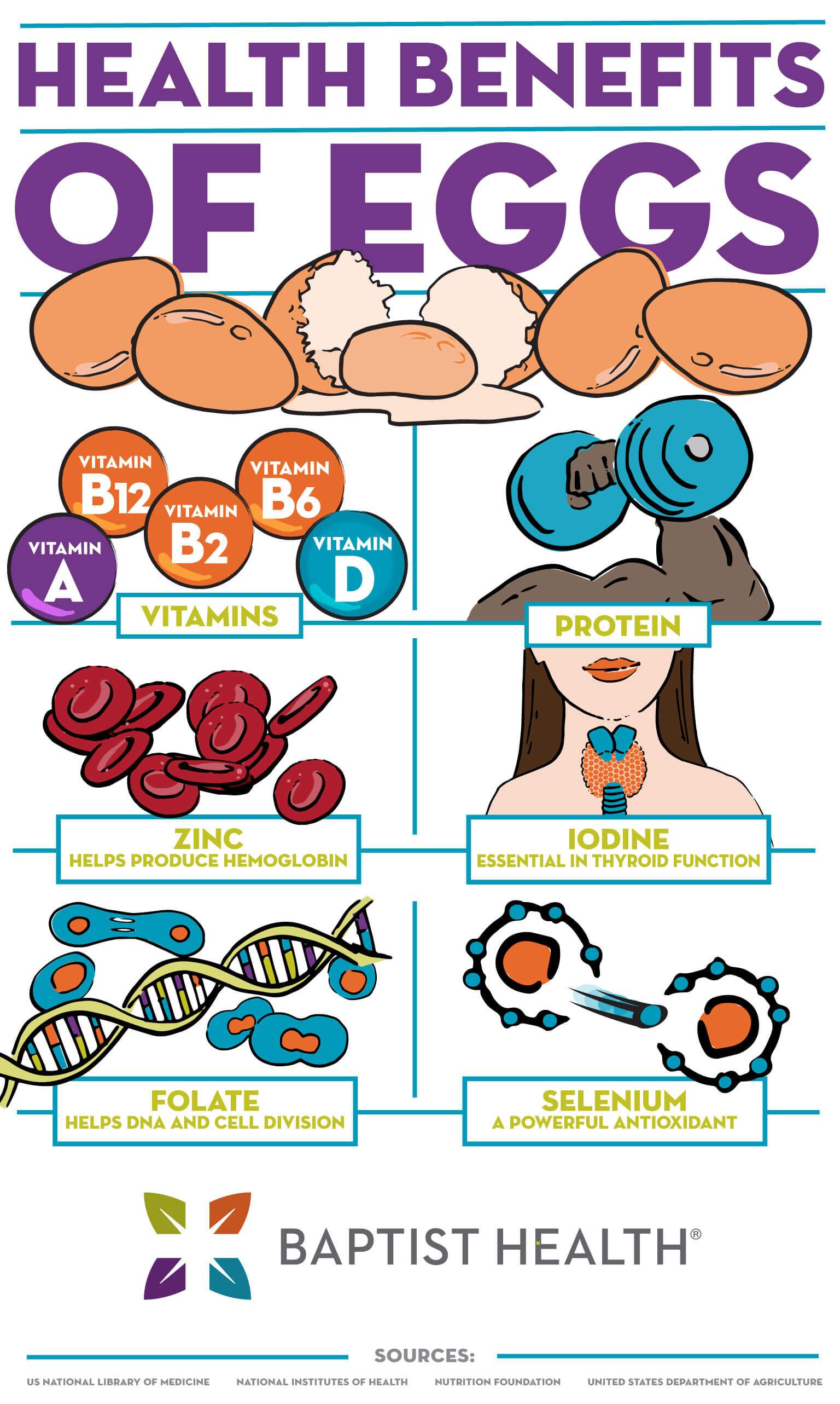 health benefits of eggs infographic